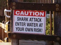 Shark attack sign - Solana Beach